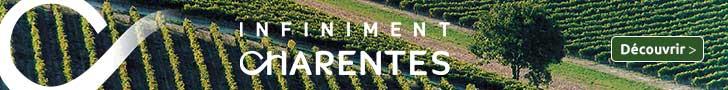 infiniment-charentes.com Chateau de Maumont